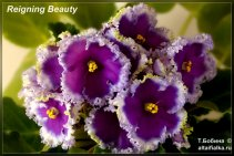 Reigning Beauty (4фото)