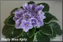 Pretty Miss Kelly (5фото)