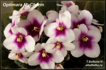 Optimara MyCharm (6фото)