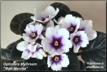 Optimara MyDream (3фото)